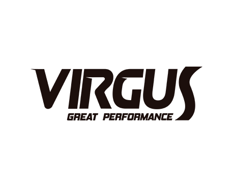 logo_Virgus_interna