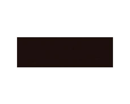 Virgus Great Performace logo