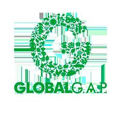 png_logo-gap-6591514
